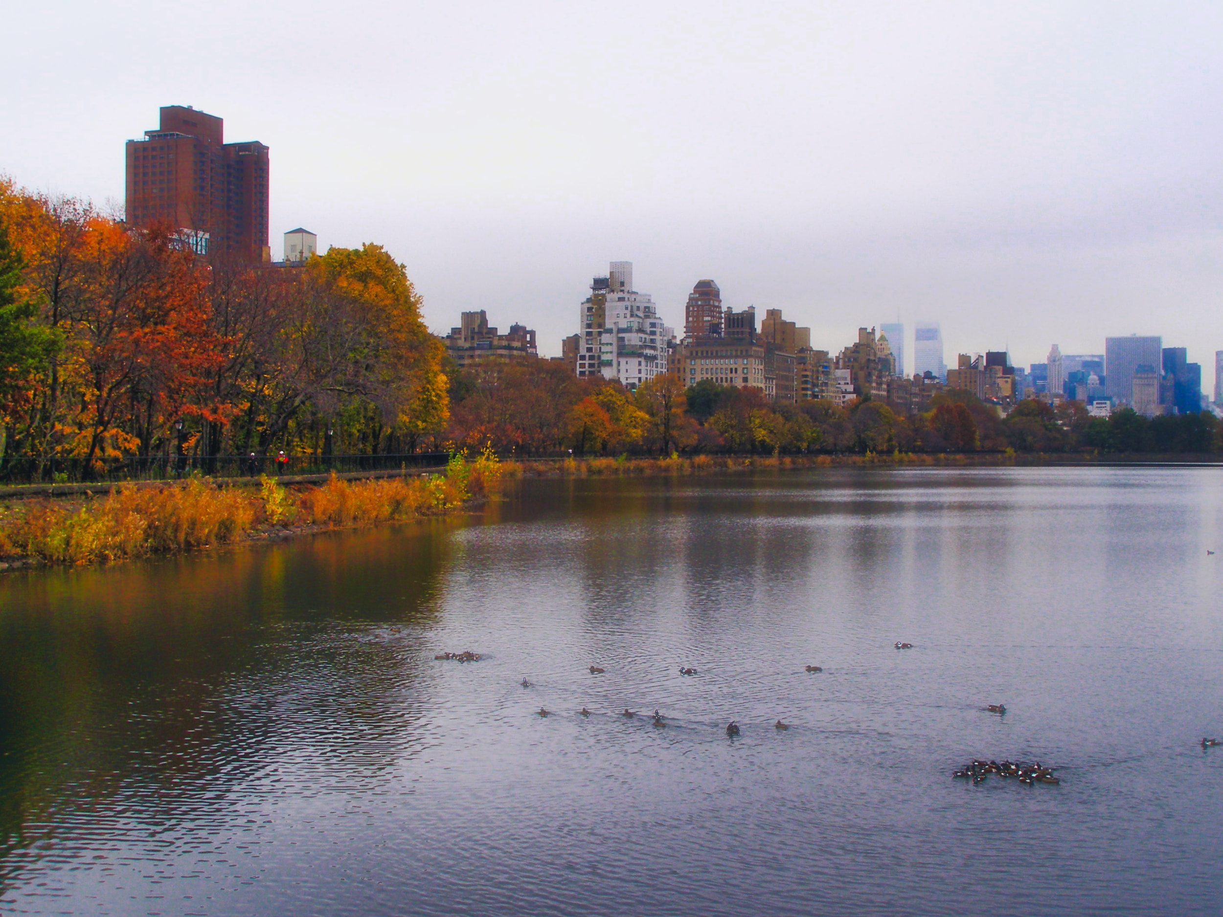 Jackie Kennedy Onasis Resevoir-Manhatten-New York-USA-wmlamont-min.jpg