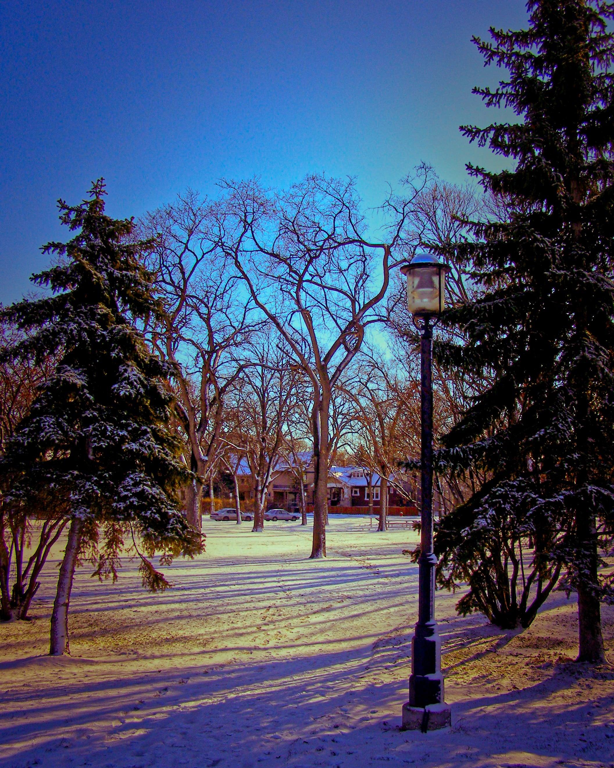 The Path to Narnia - Winnipeg, Manitoba [2006]