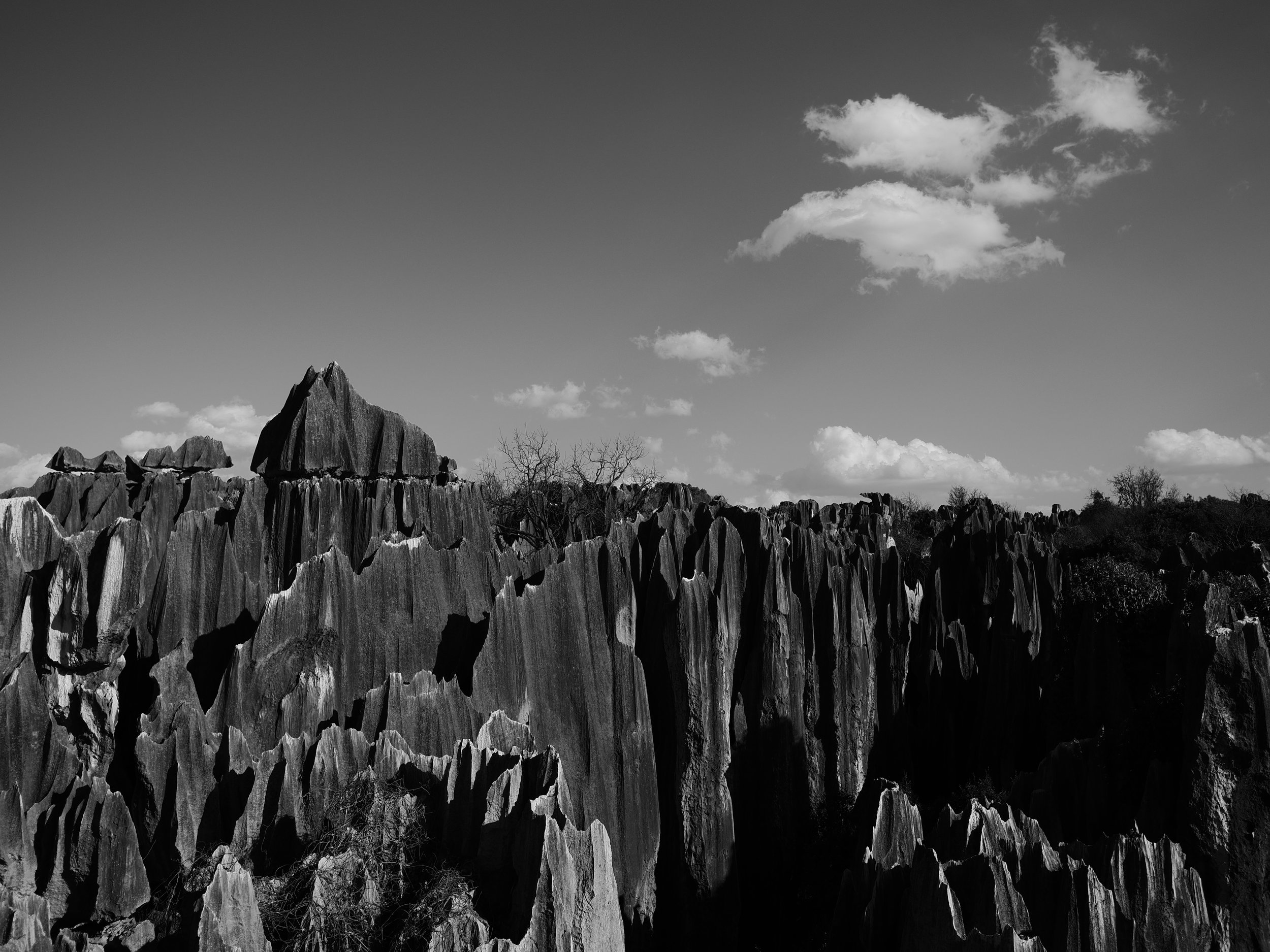 Stone Forest, Yunnan - China | 2019
