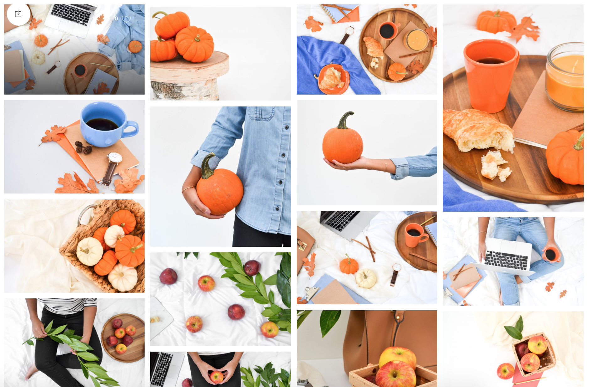 fall styled stock photos