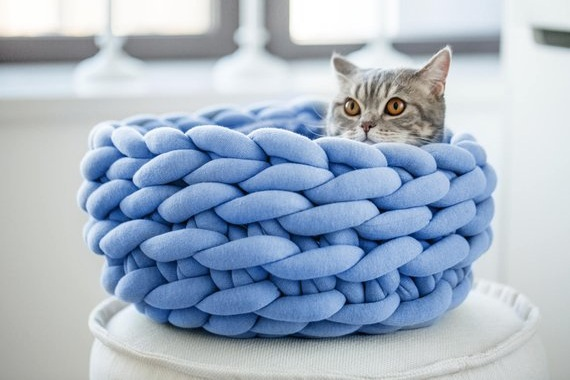 braided+pet+bed