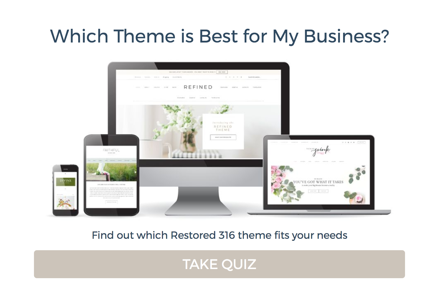restored 316 website design theme quiz