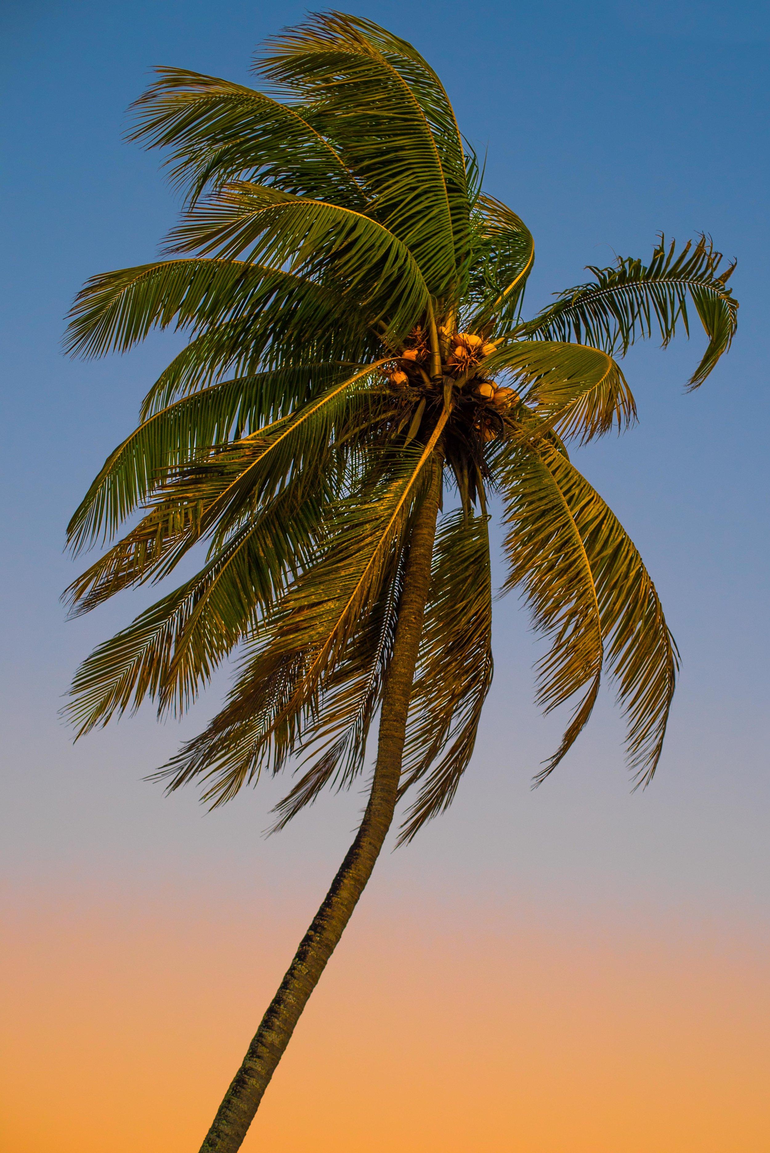 playa larga (1 of 1)-5.jpg