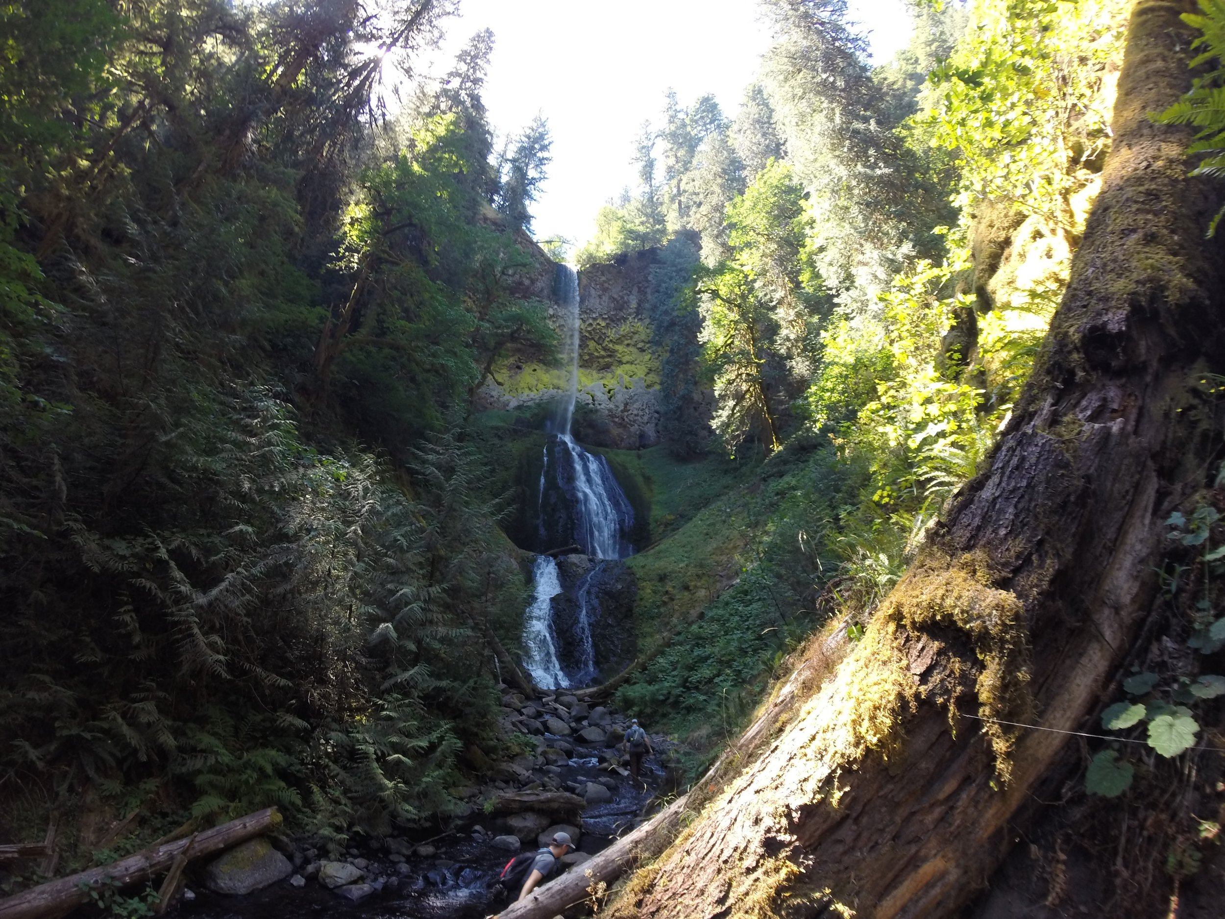 Pup Creek Falls is spectacular and we didn't see another person all day.