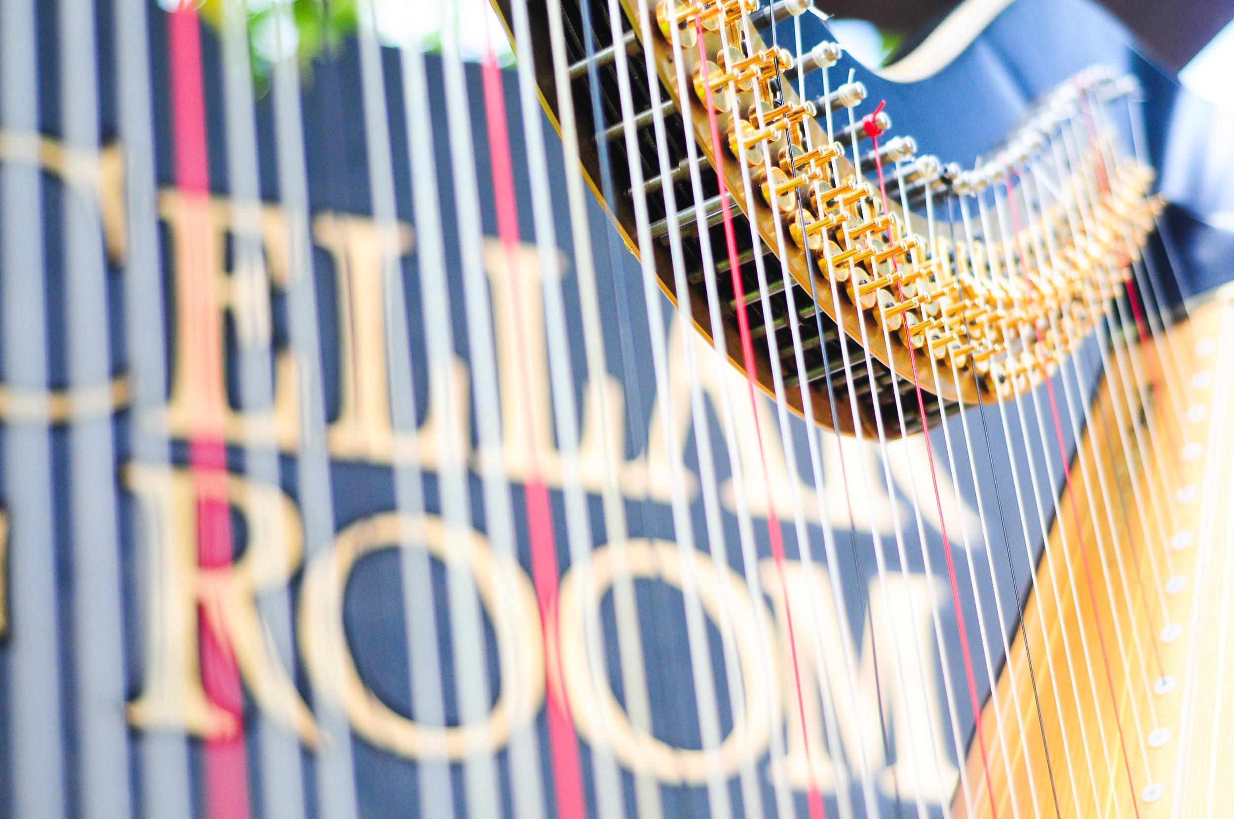 Elegance Harp and Flute 2011-2.jpg
