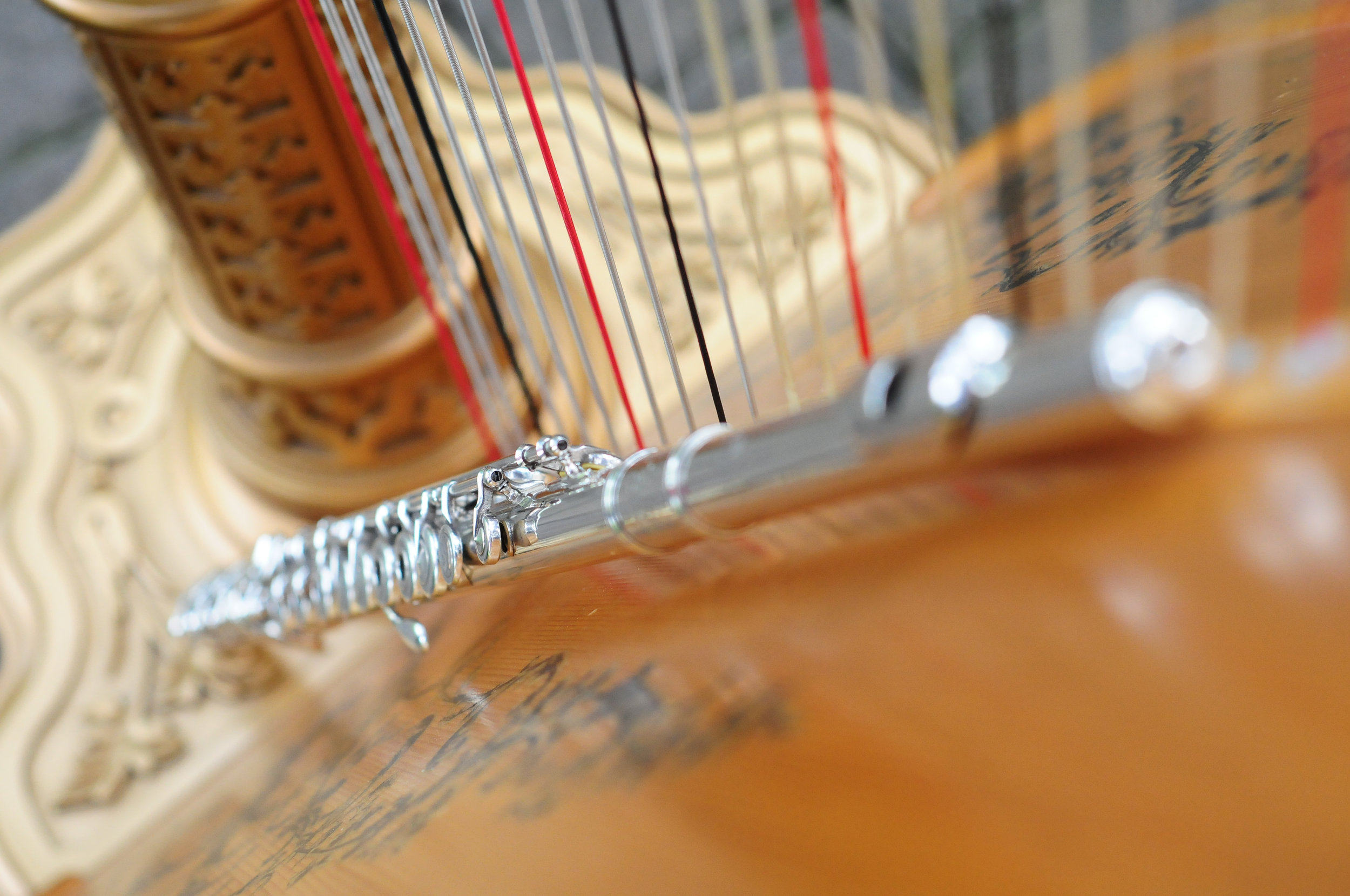 Elegance Harp and Flute 2011-25.jpg