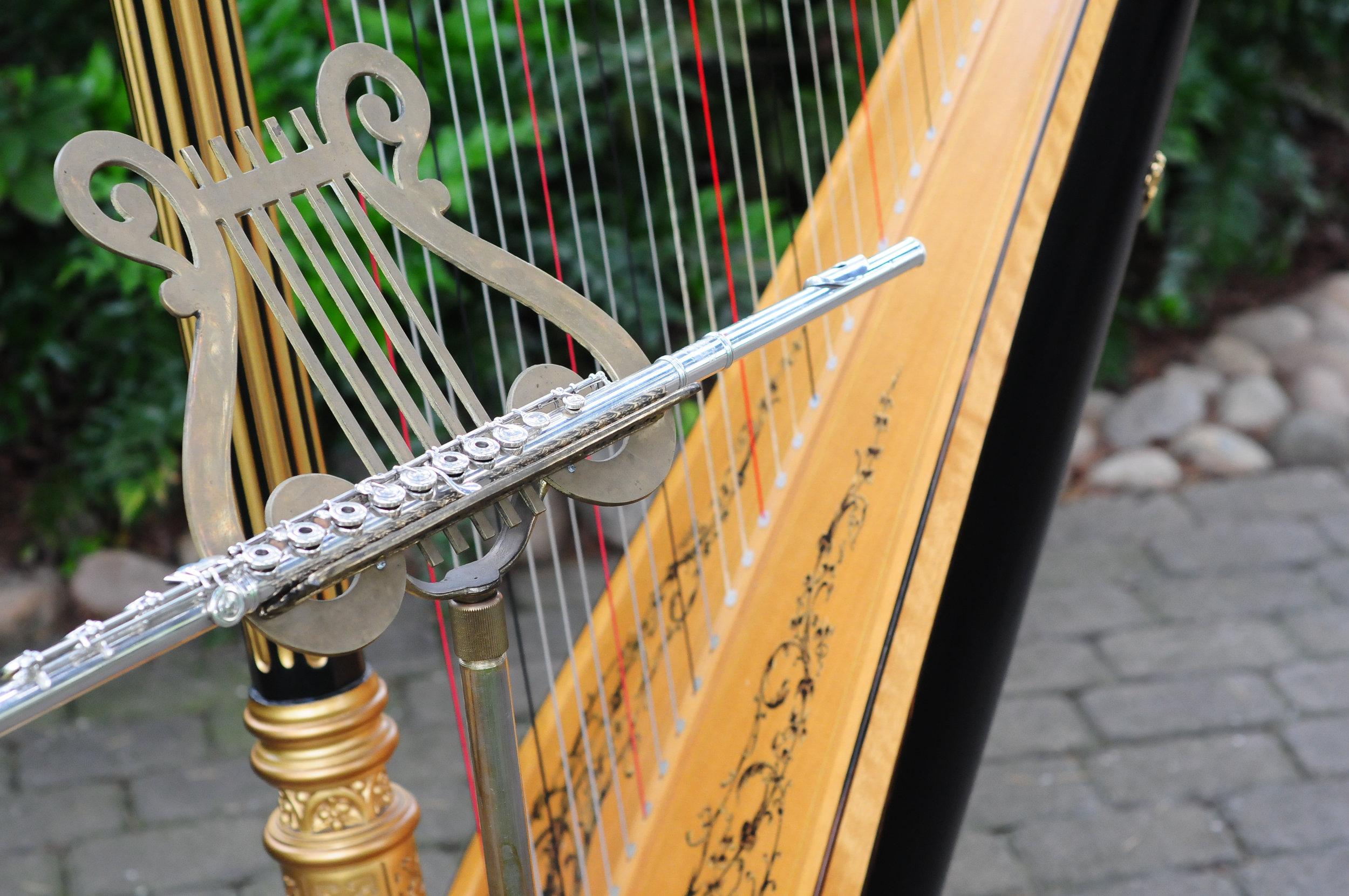 Elegance Harp and Flute 2011-26.jpg