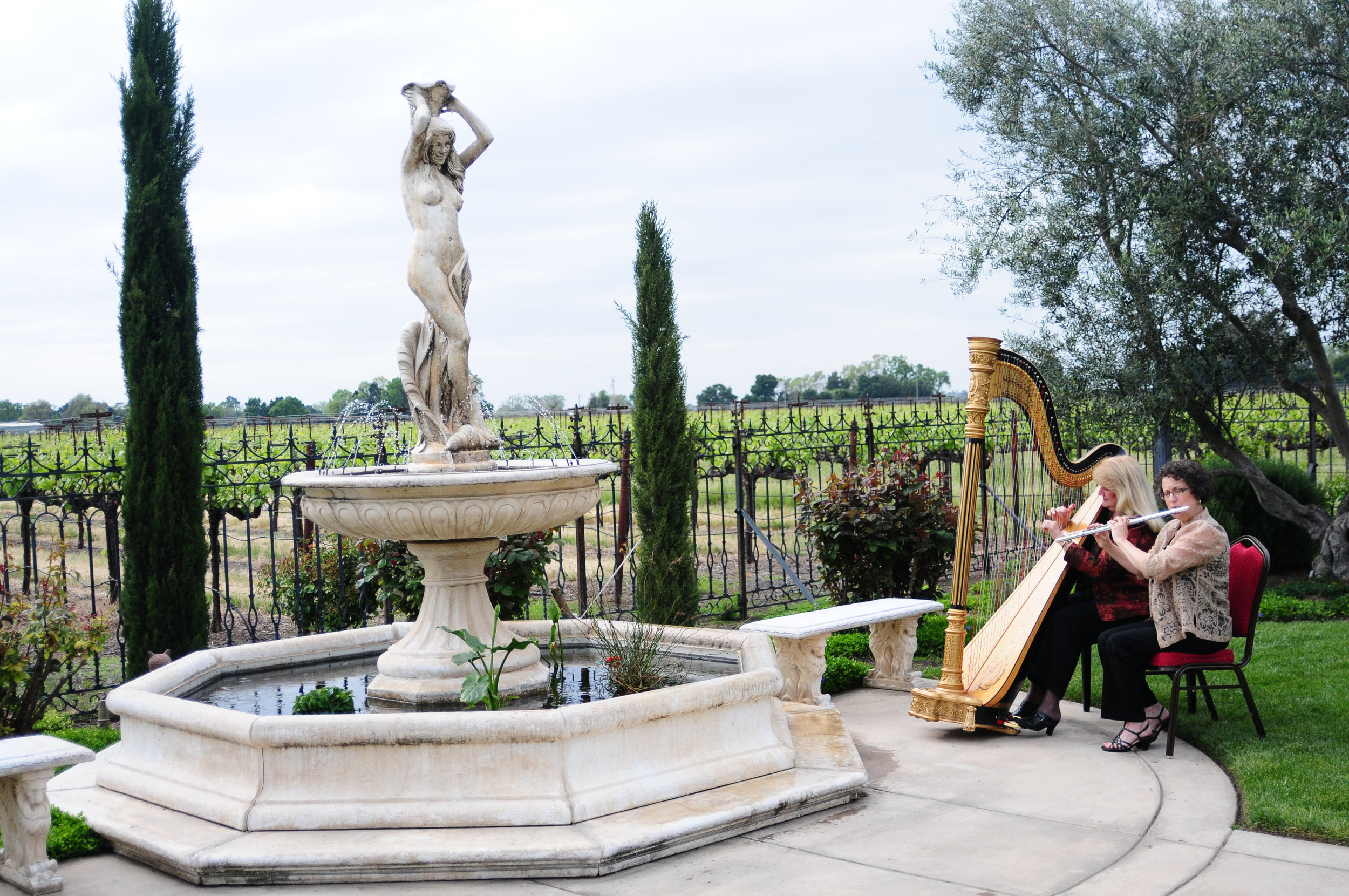 Elegance Harp and Flute 2011-32.jpg