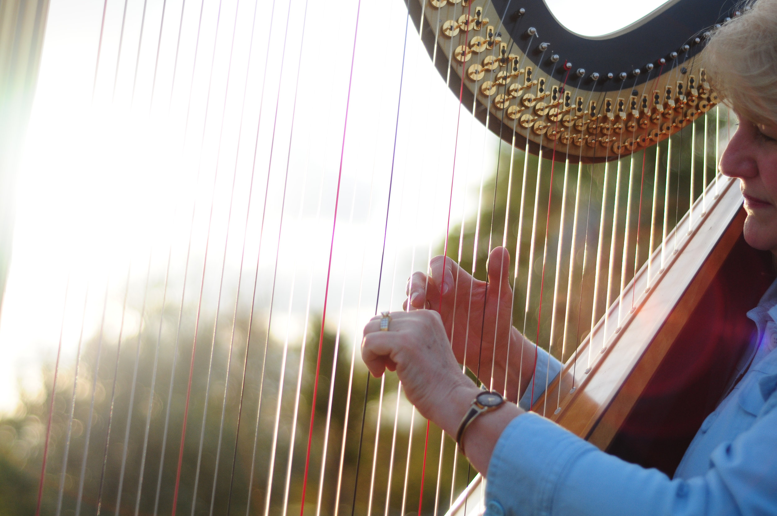 Elegance Harp and Flute 2011-37.jpg