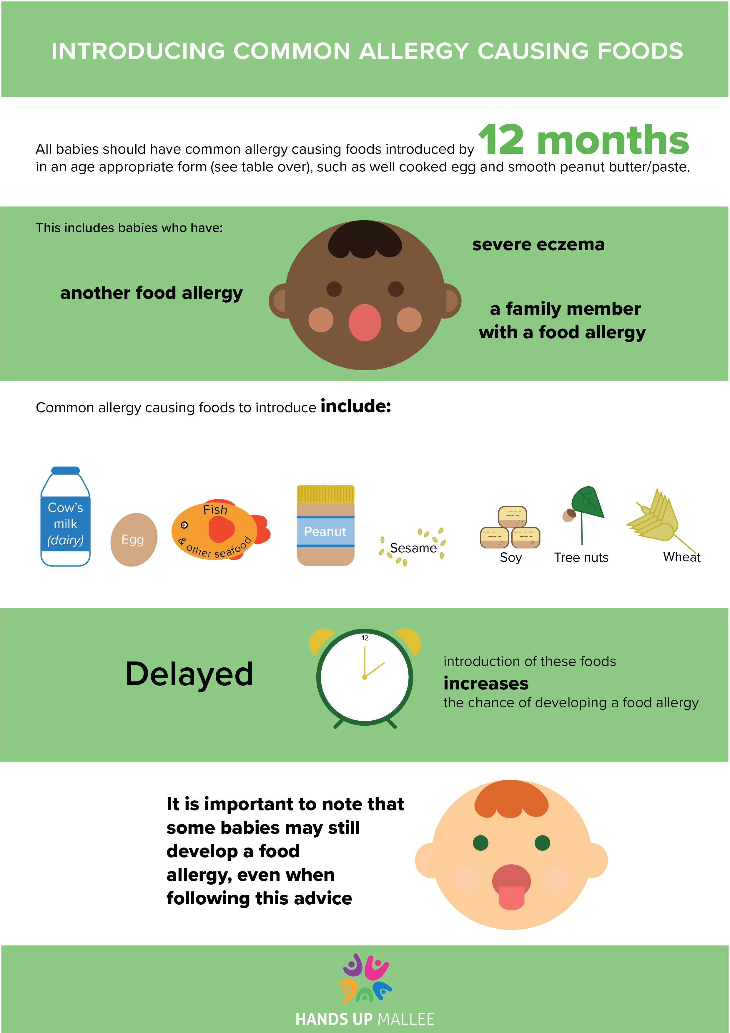 Introducing Common allergy causing foods - Download our 2 page guide to introducing allergy causing foods