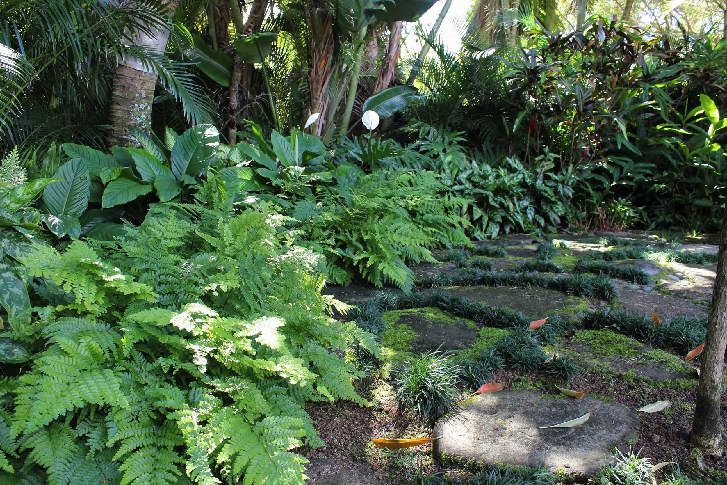 INSTALLATION - We specialize in the installation of tropical plants, stone sculptures, pathways, lighting and irrigation systems for commercial and residential properties.