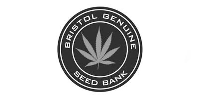 Bristol-seed-sized.jpg