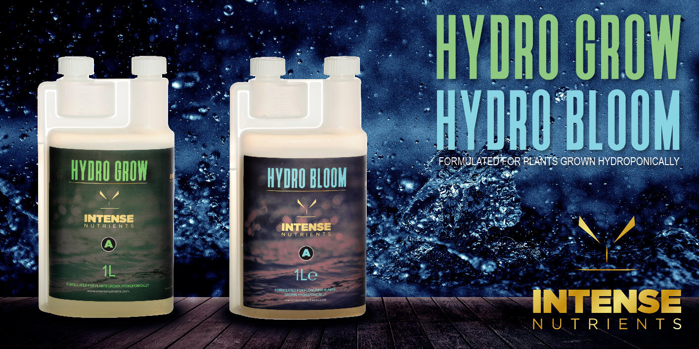 Hydro-G-and-B-header-web.jpg