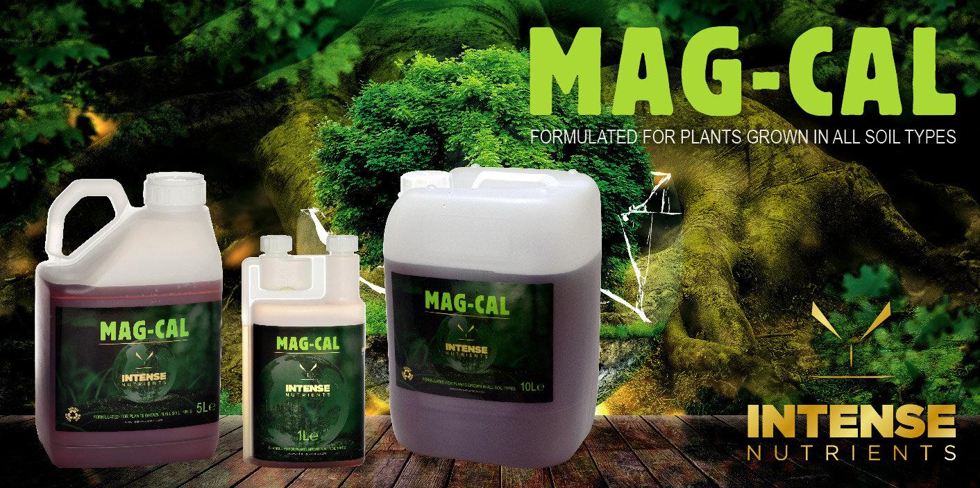 Mag-cal-banner-web.jpg