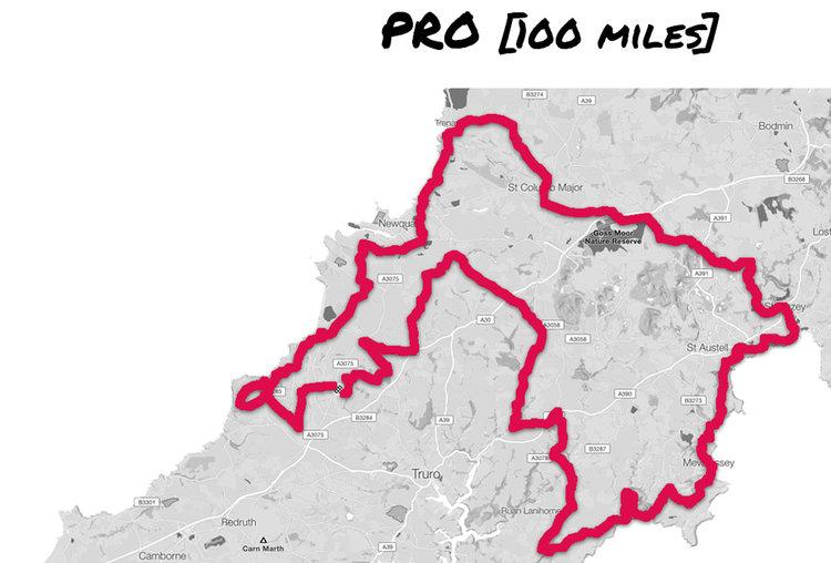 pro-100_v2.jpg