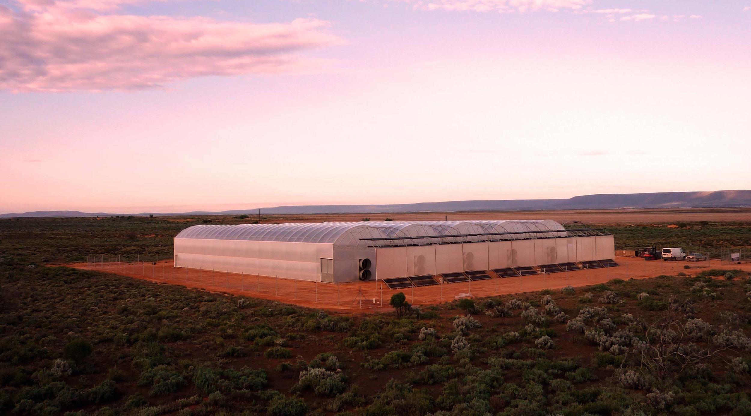 2000 m2 pilot Seawater Greenhouse near Port Augusta, Australia.