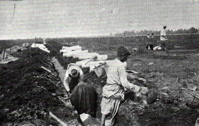 Settlers drain swampland around Petah Tikva, 1906.