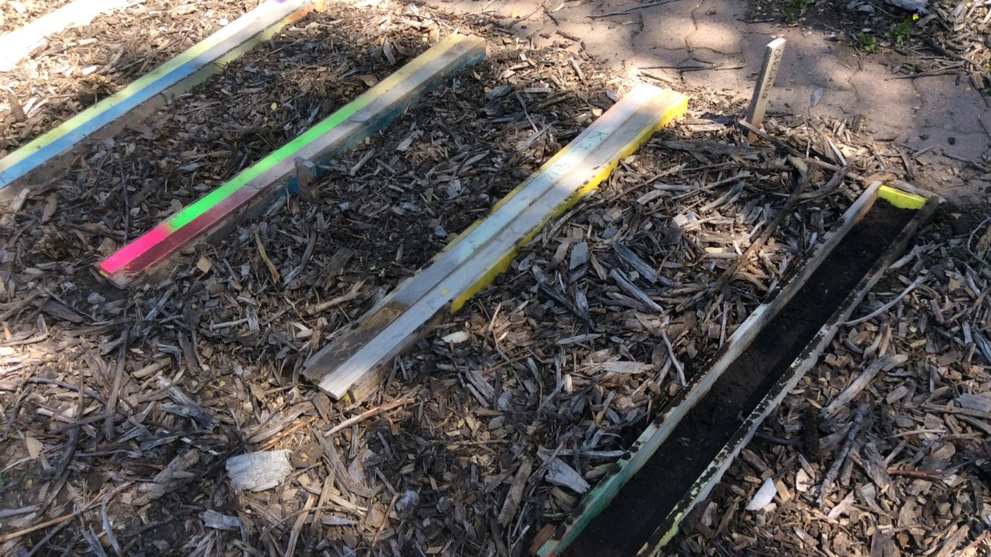 Wood frames protecting seeds from the mulch