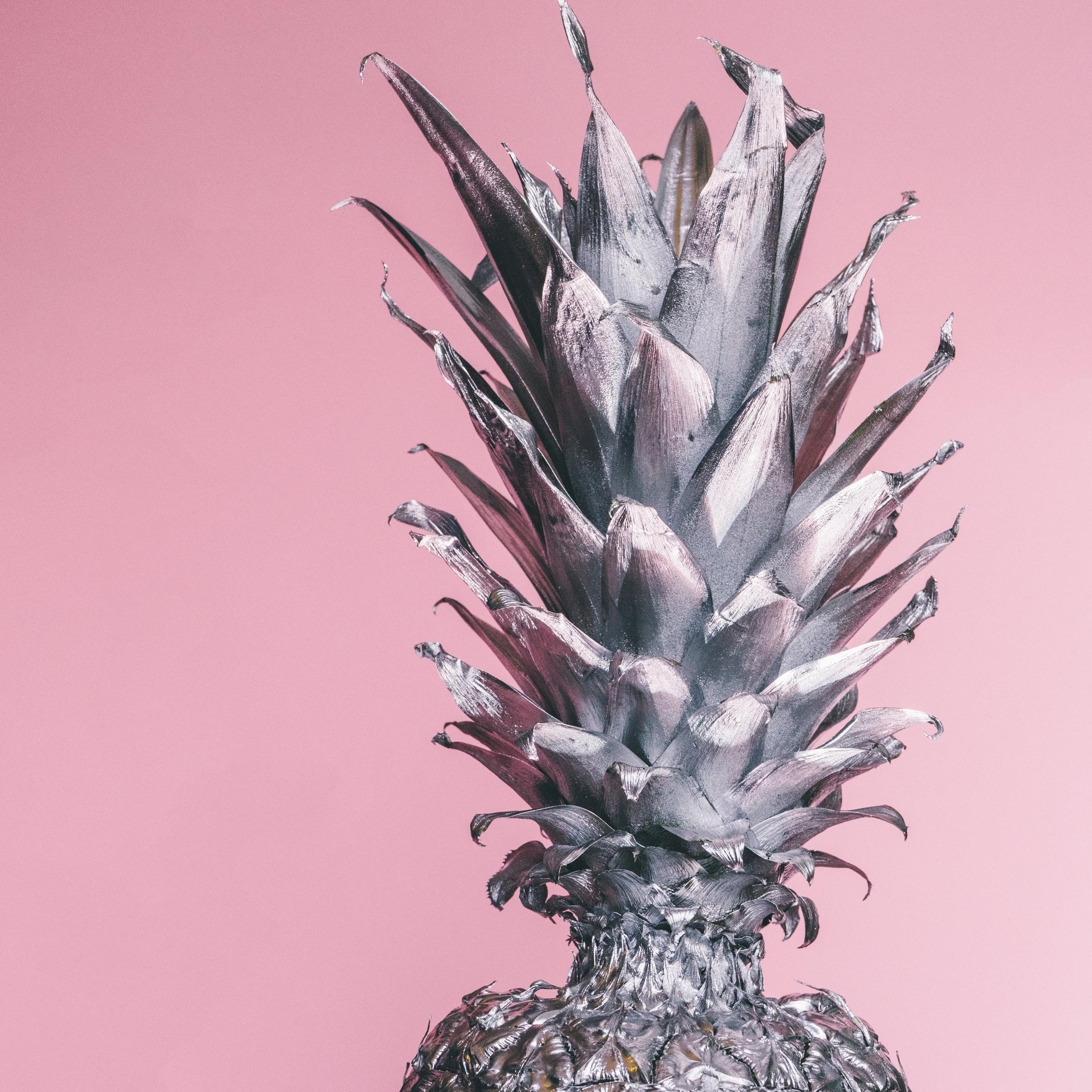 pineapple-supply-co-86279.jpg