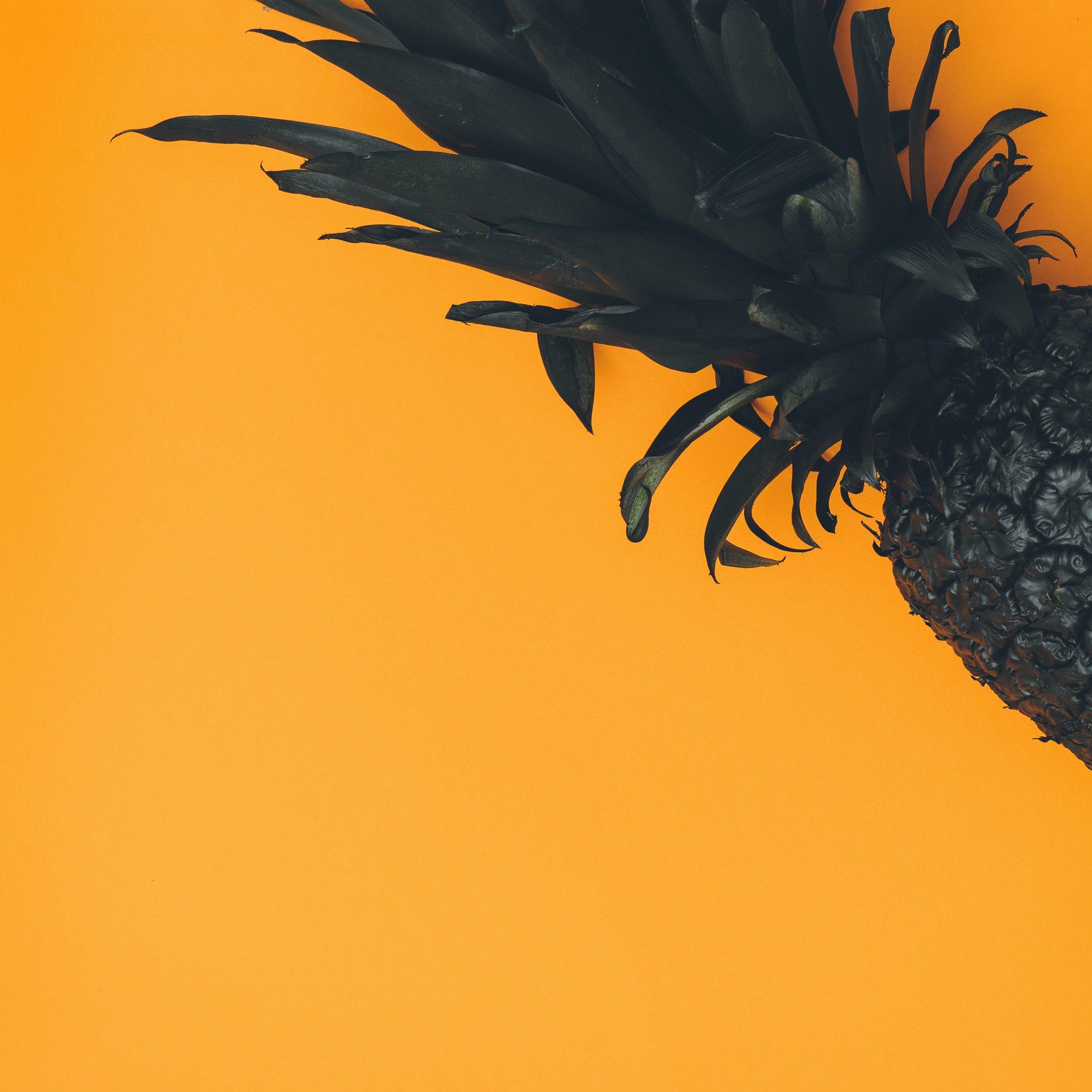 pineapple-supply-co-378132.jpg