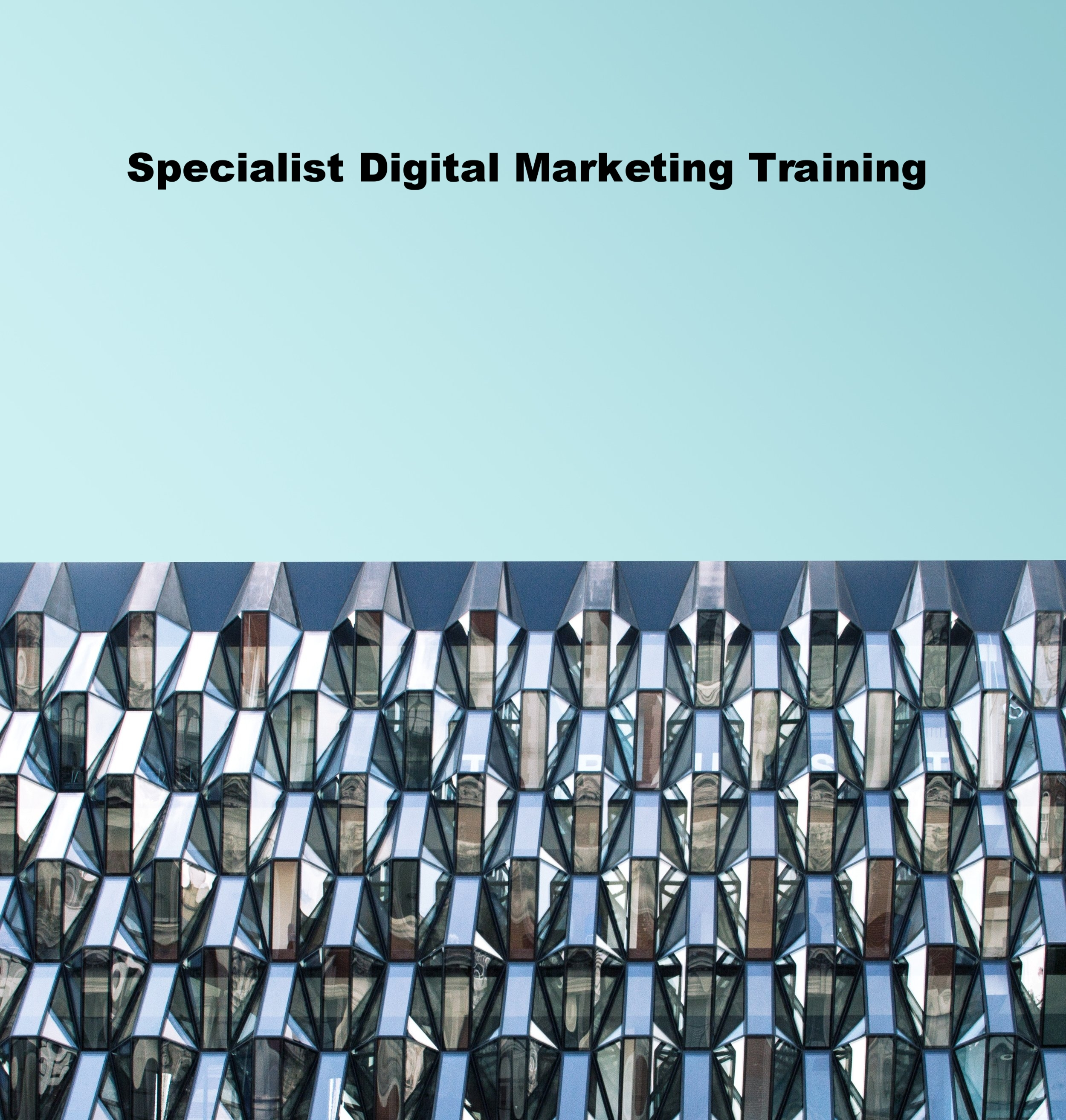 Specialist digital marketing bananir
