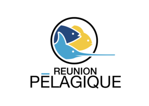 REUNION PELAGIQUE LOGO SCREEN SHOT-OPTIM.png