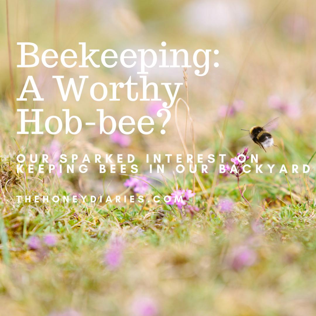 TheHoneyDiaries/AnInterestingHob-bee?