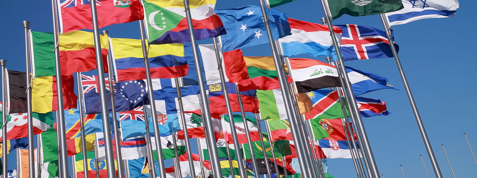 Flags_W.jpg