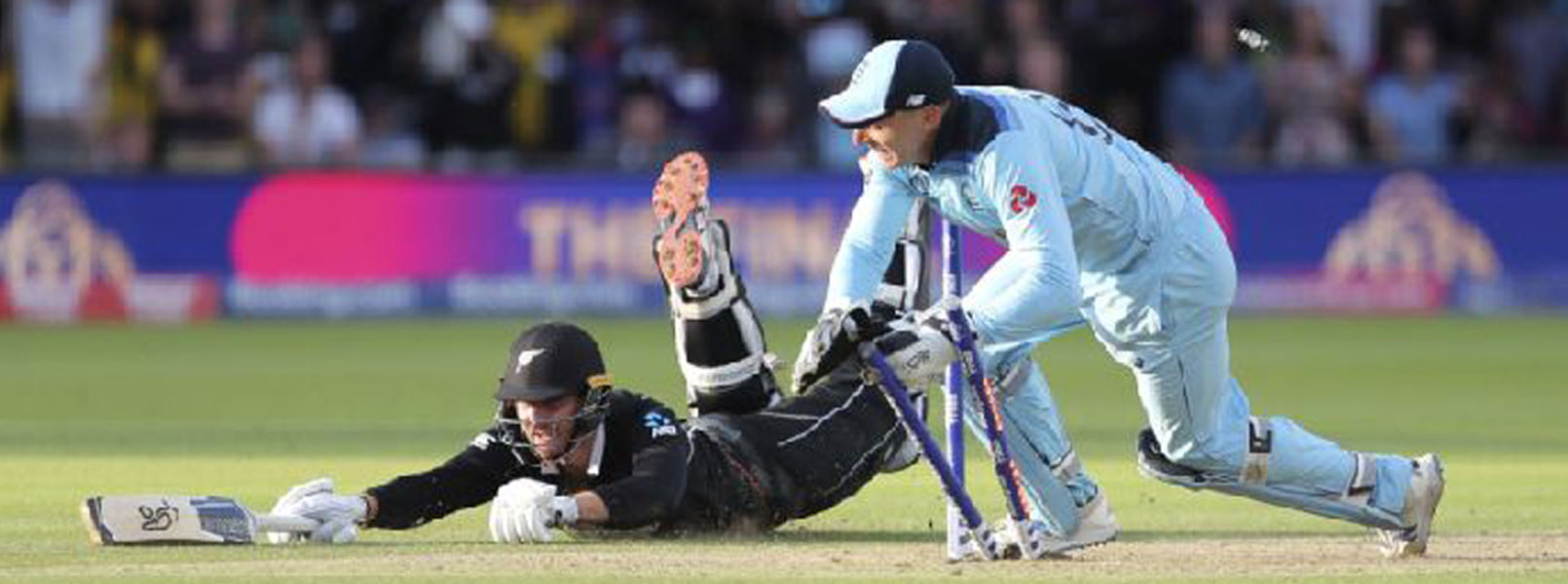 Cricket_W.jpg