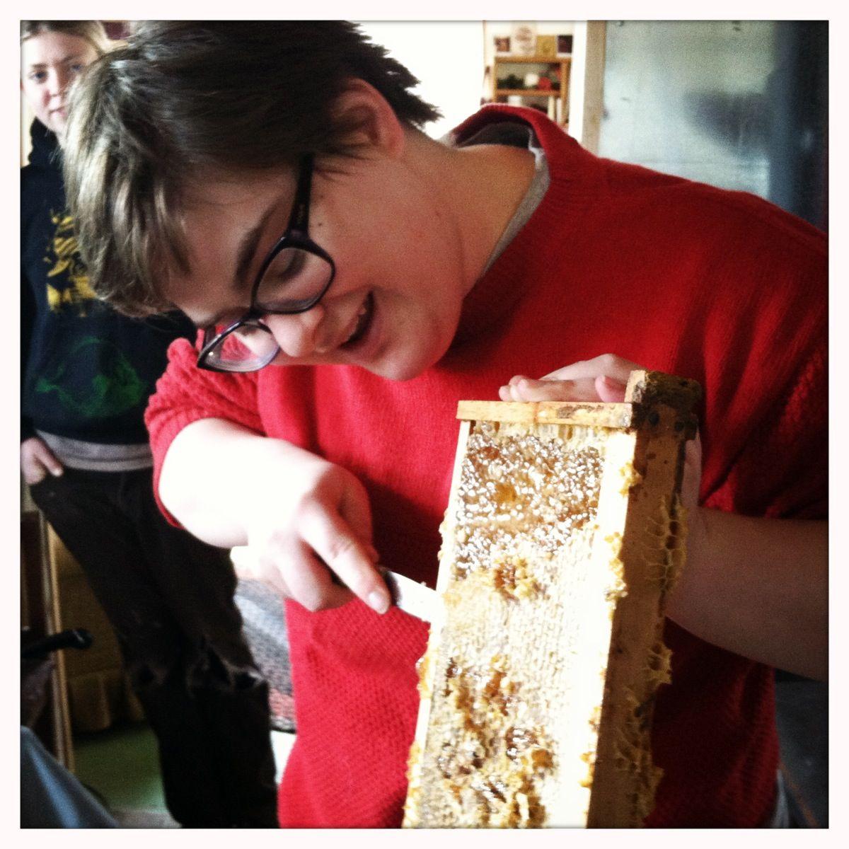 Teresa scraping honeycomb