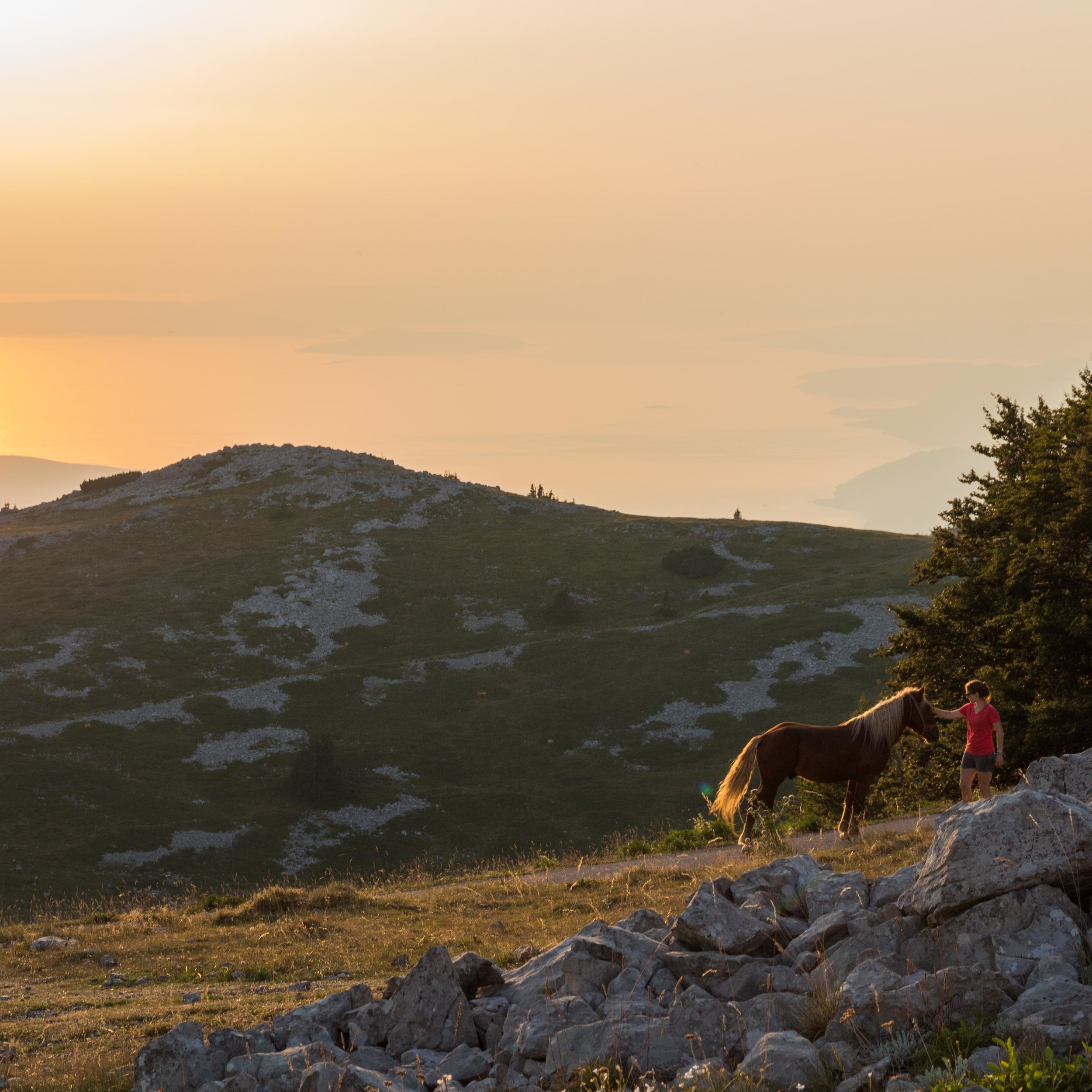 Woman petting a horse during a sunset on the Dalmatian coast on a transformational travel experience