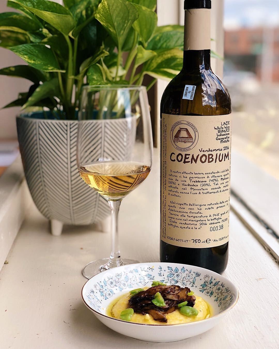 wine_wine_walk_portland_maine_white_italian_piccolo.jpg