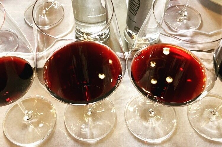 wine-wise-events-trips-tuscany-2018IMG_5847.jpg