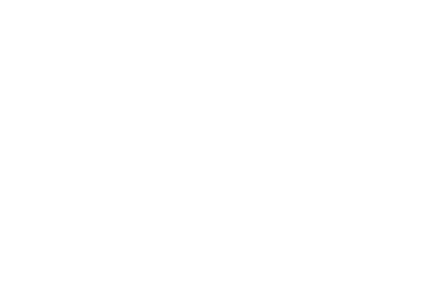 veriforce_logo-WHITE.png