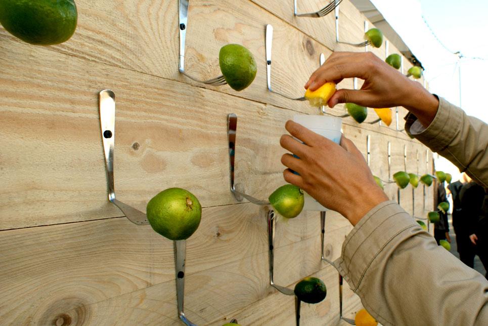 lemon-lime-food-wall-display.jpg