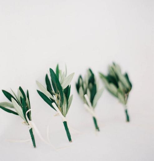 Modern olive sprig boutonnieres for a minimalist wedding.