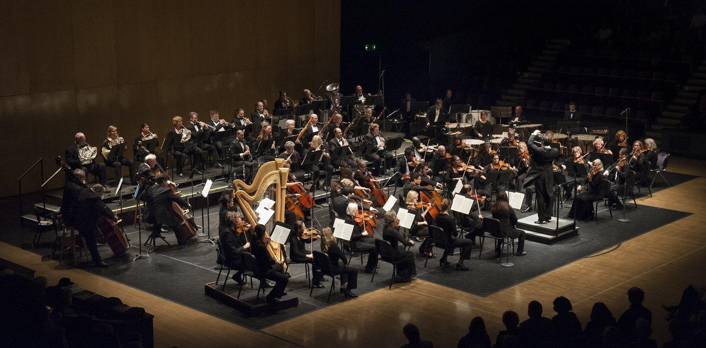 Illuminee - SC symphony.jpg