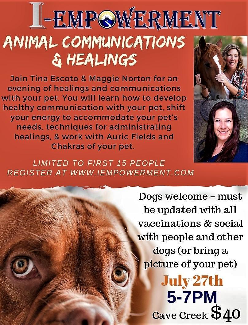 Animal Communication (1).jpg