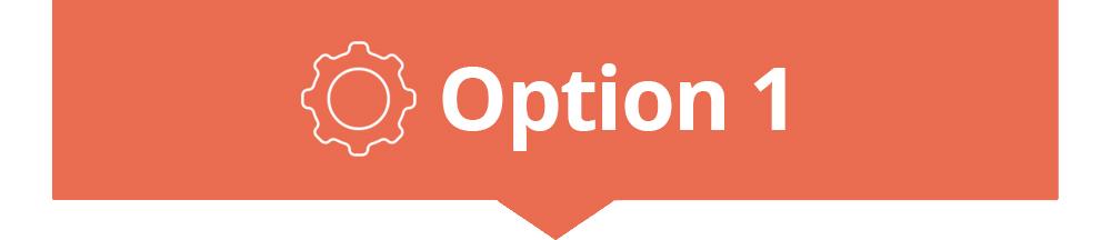option1.jpg