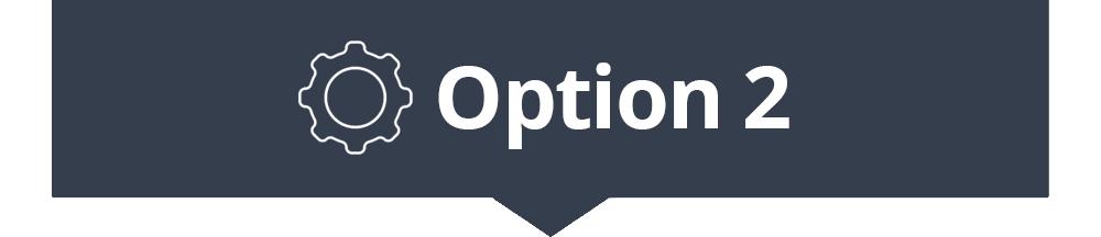 option2.jpg