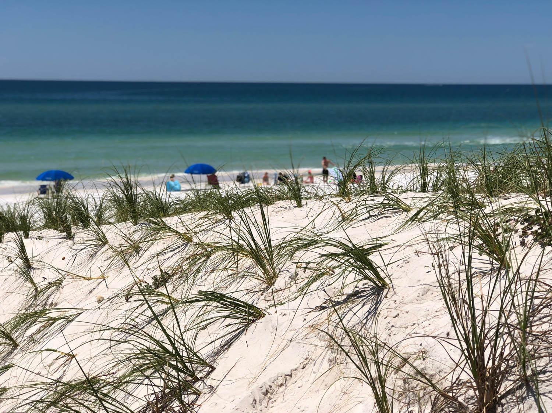 sandy beach view of Grayton Beach, Florida