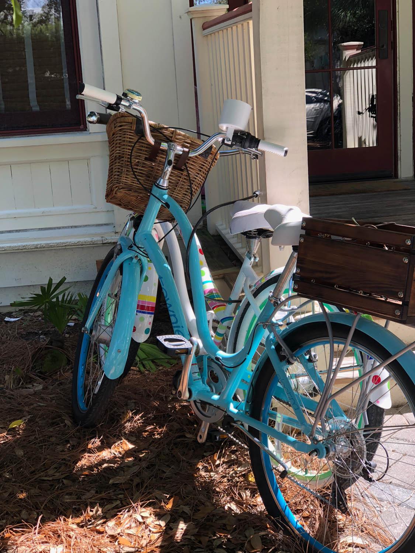 Blue bike in Watercolor, Florida