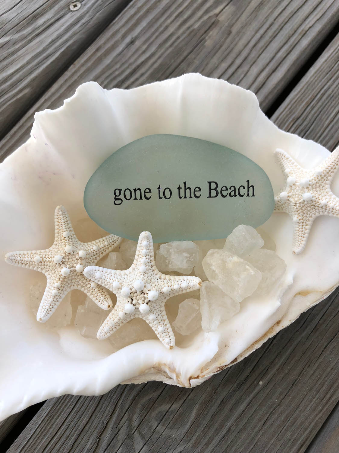 Gone to the Beach; starfish and sea glass in shell