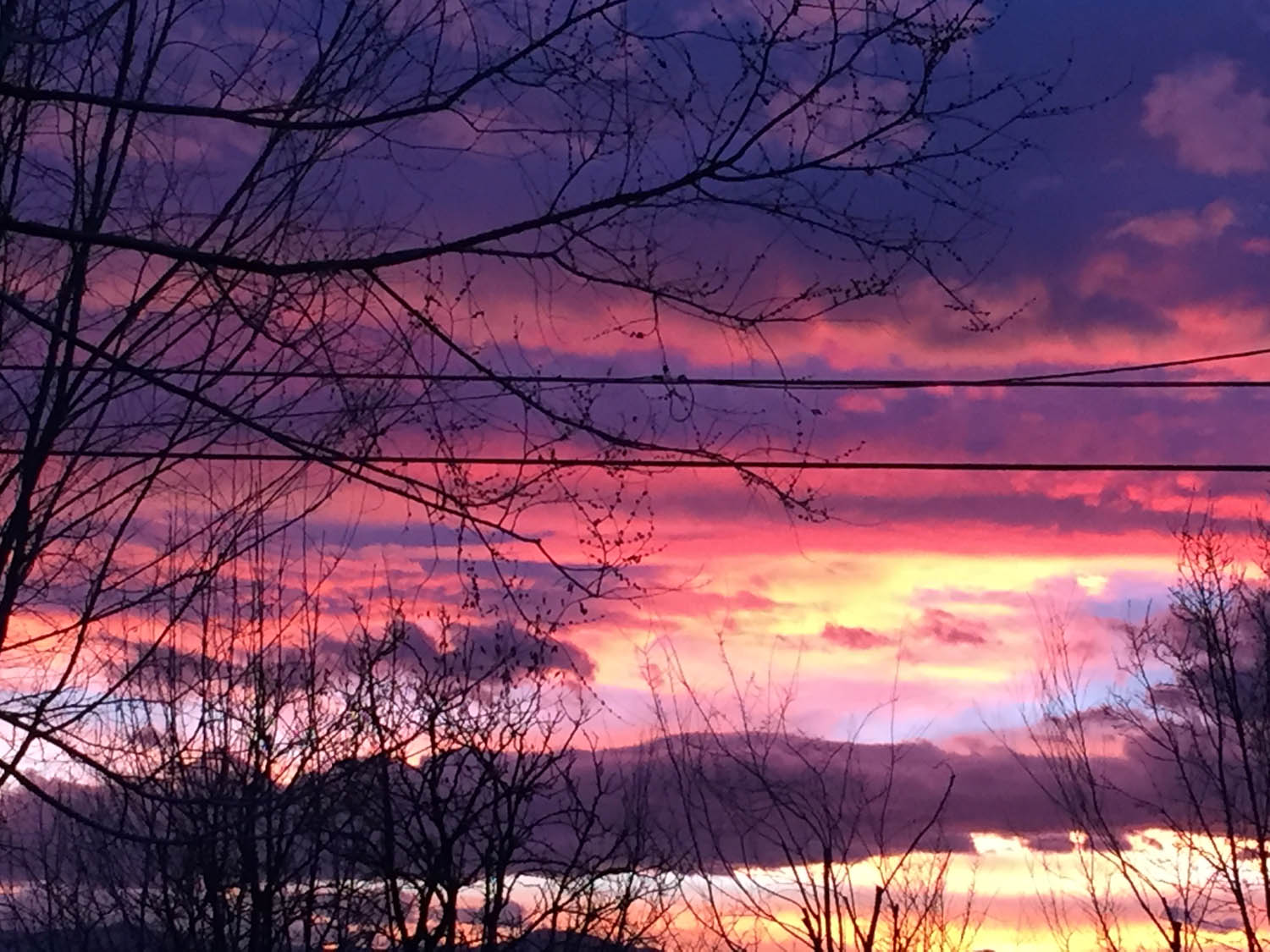 Sunset view from the backyard of Curtice Cottage in the late fall
