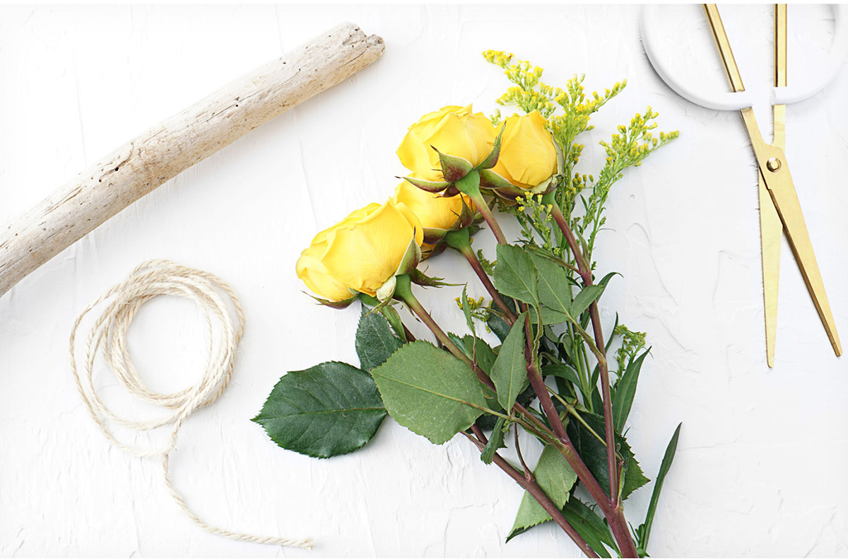 Stick, string, floral scissors, and bundle of fresh yellow roses.