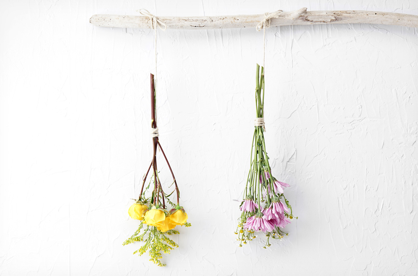 Two bundles of fresh flowers tied and hanging from a stick to dry.