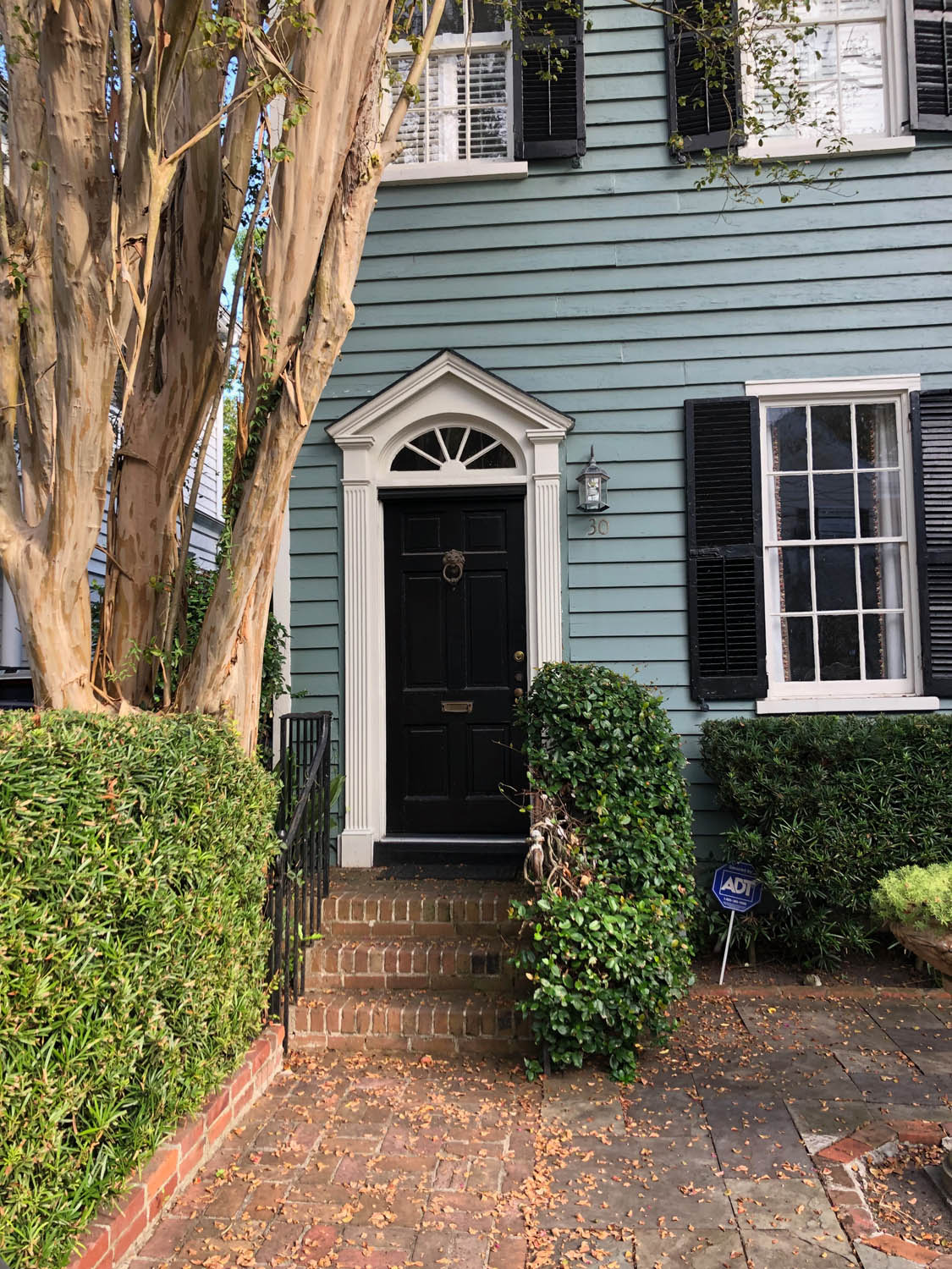 pretty green painted home with brown door in Charleston
