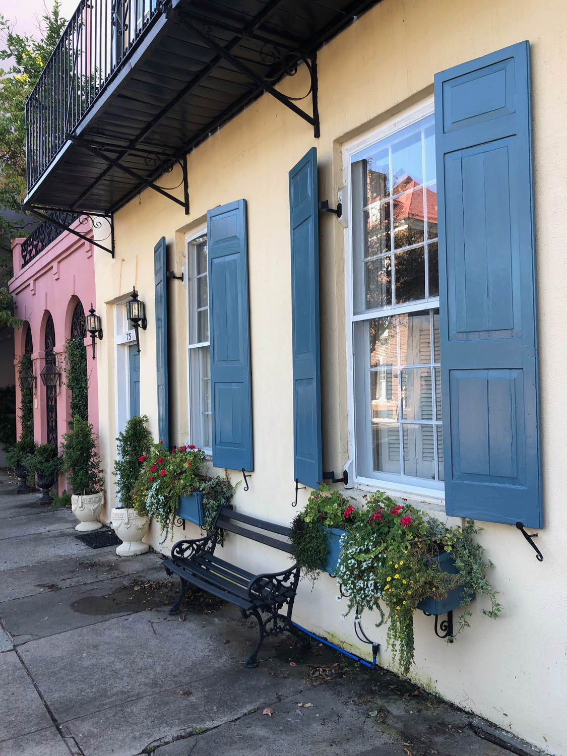 painted row houses with window boxes