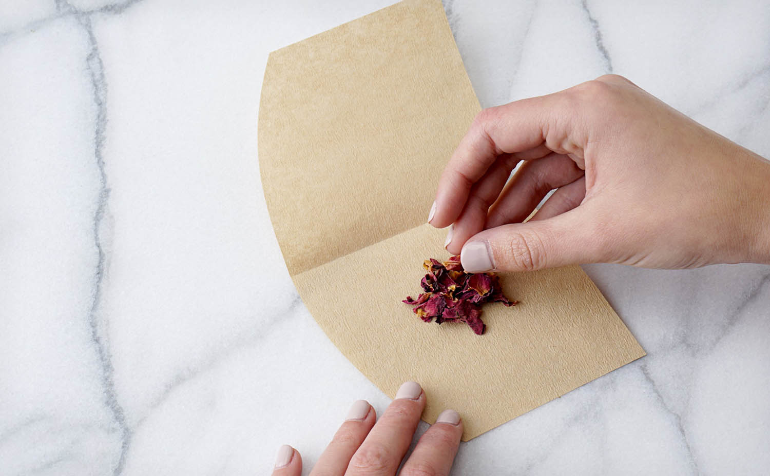 Loose dried flower petals being sprinkled onto coffee filter paper
