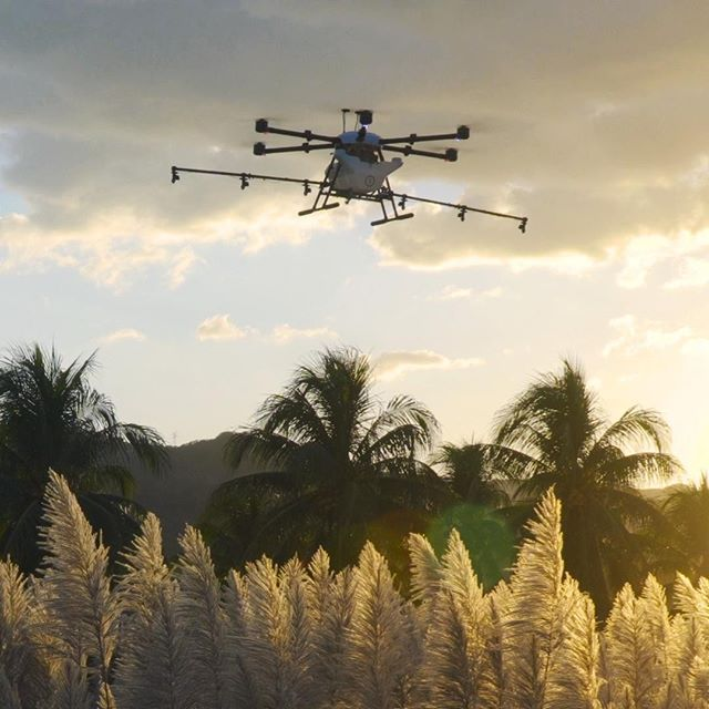 Sunset Spray ⠀⠀⠀⠀⠀⠀⠀⠀⠀ ⠀⠀⠀⠀⠀⠀⠀⠀⠀ #drones #dronestagram #agriculture #spraying #fertilizer #technology #science #drone #dronegear #dronelife #droneporn #crops #sugarcane #elsalvador #sustainability #ecofriendly #business #flight #innovation #autonomous #hylio